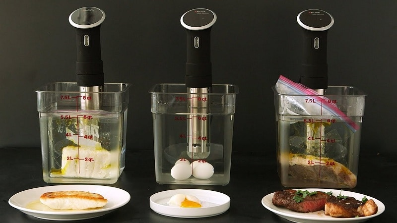 best sous vide machine and gear to buy in 2021